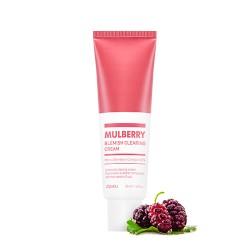 A'PIEU Mulberry Blemish Clearing Cream – Rozjasňujúci pleťový krém