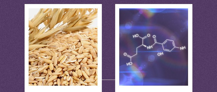 APIEU-Super-Protein-Repairing-Shampoo_01